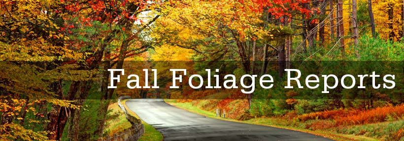 Fall Foilage Reports